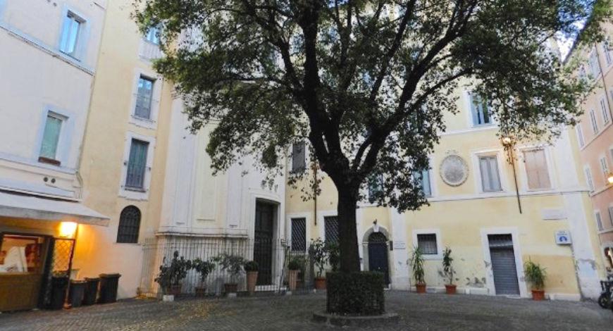 Il 5 ottobre è stata rimossa la quercia per la sostituzione